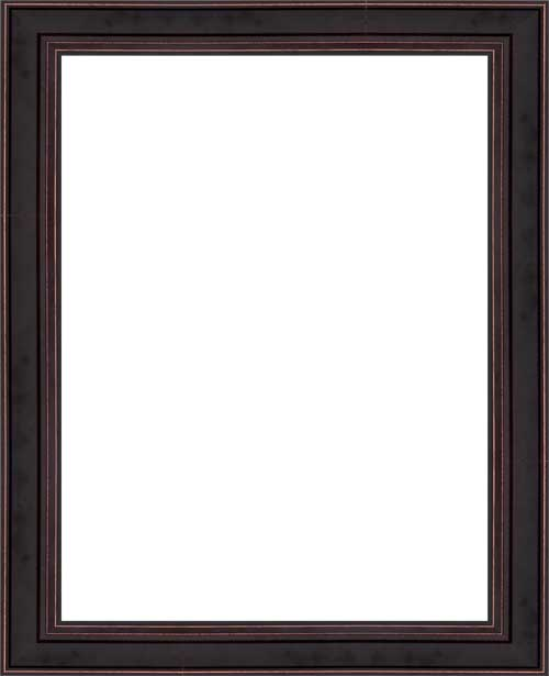 Frame Descriptions - Framed Canvas Art
