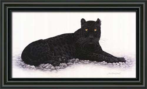 Black Panther Framed Canvas Art