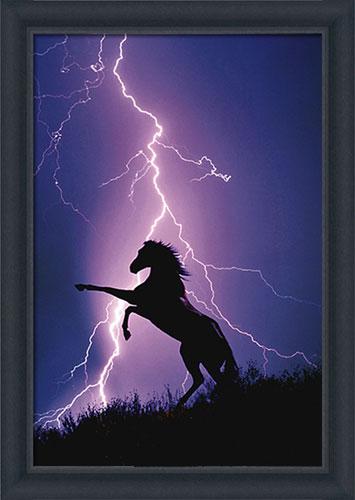 Lightning Horse Framed Canvas Art