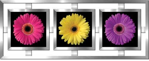 Gerbera Daisy Trio Framed Canvas Art