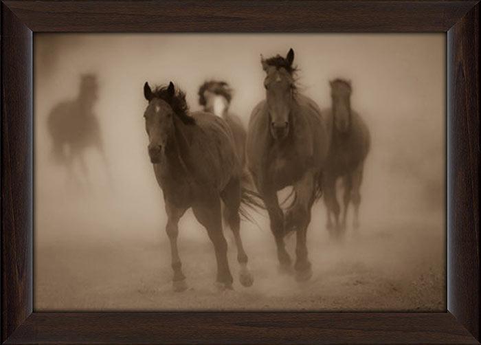 Sepia Horses Framed Canvas Art