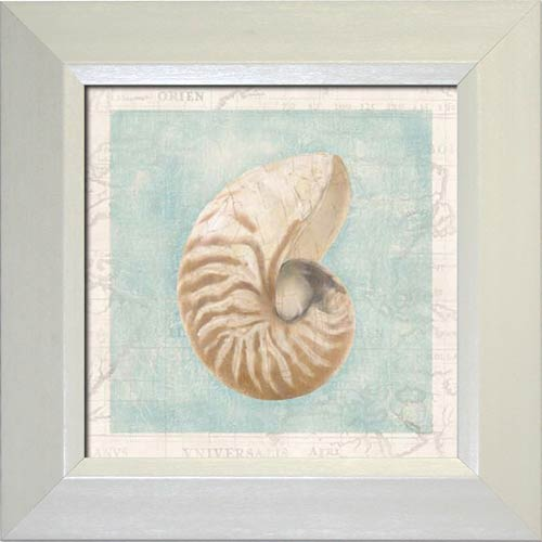 Framed Shell I