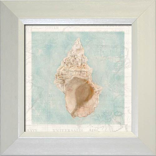 Framed Shell II
